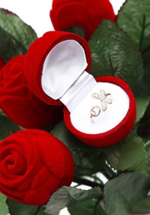 Red Rose Put Your Ring Inside